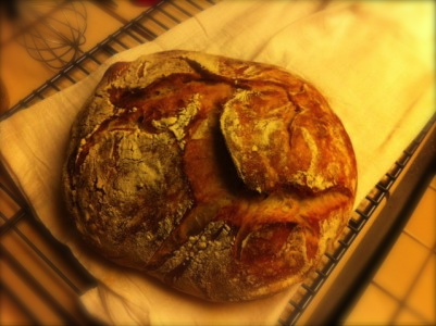 bread-401x300